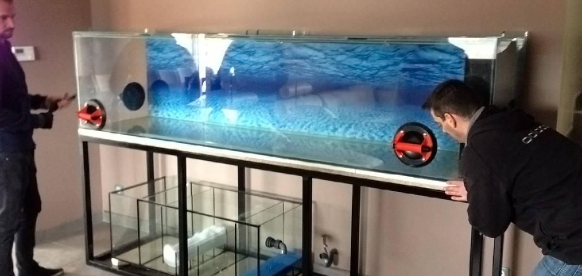 fish pond aquarium features serving LA surrounding area