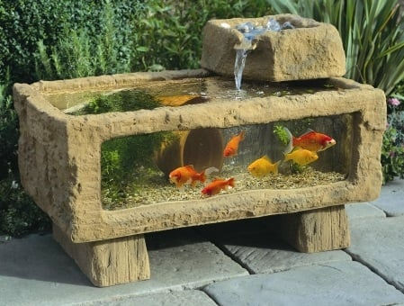 5 Unusual Spots for a Custom Aquarium