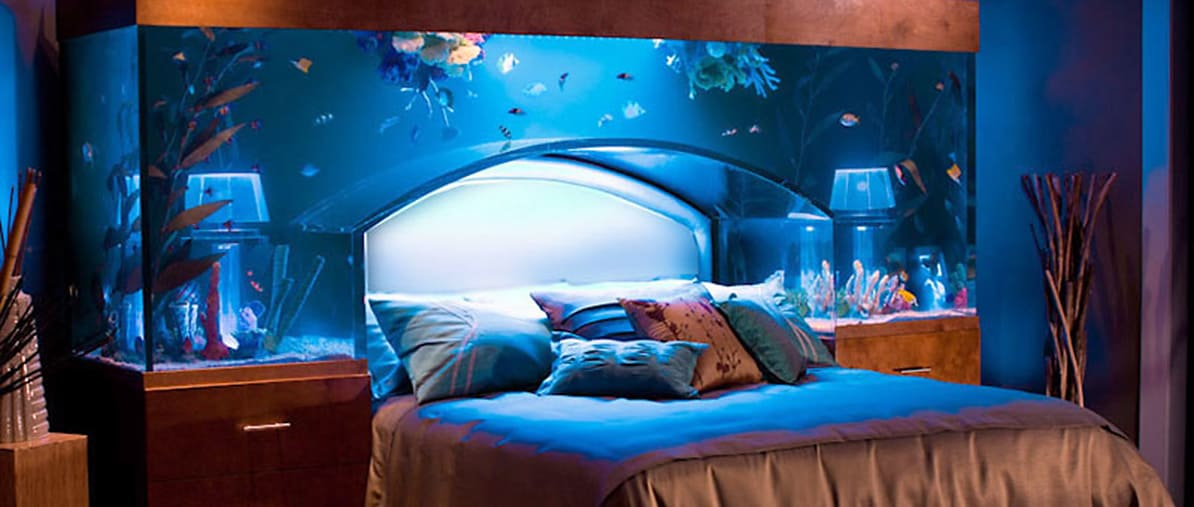 we specialize in custom aquariums small and large