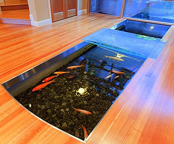 Aquarium Therapy: Reduce Stress and Add Beauty